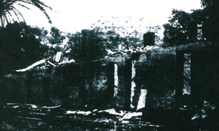 Davilak Fire