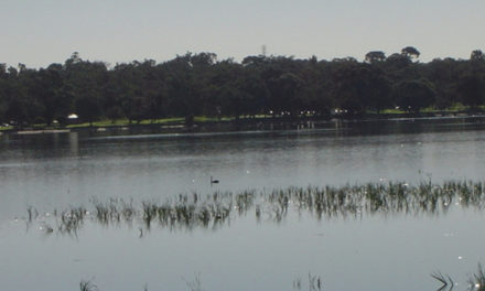 All About Bibra Lake