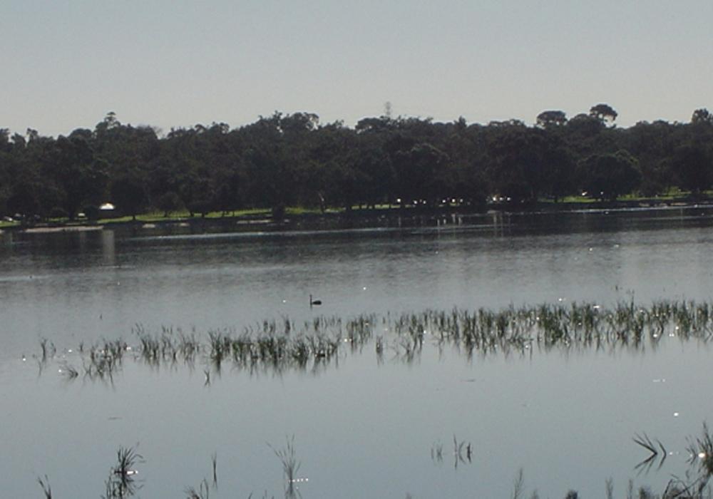 All About Bibra Lake