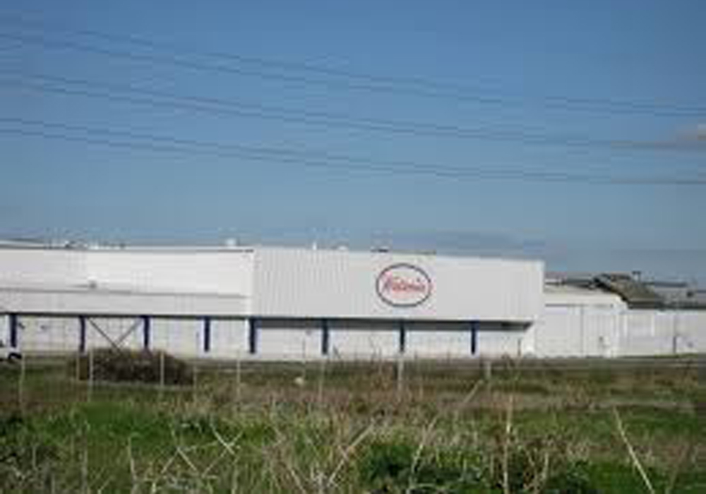 Watsonia Factory